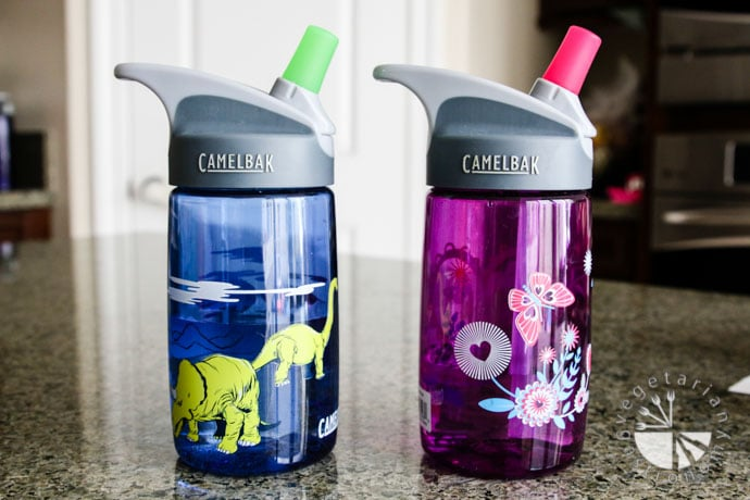 camelbak toddler waterbottle-1
