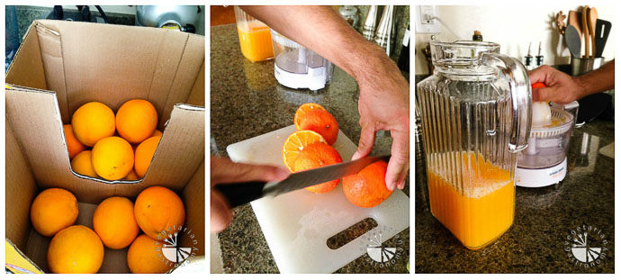 citrus juicer collage-1