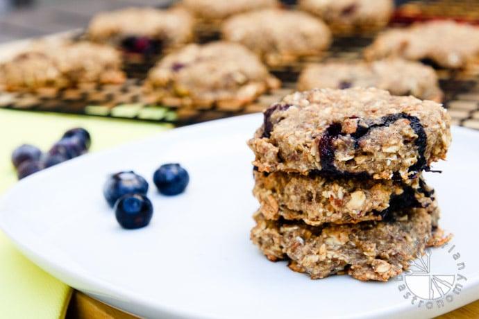 blueberry banana breakfast cookies-5