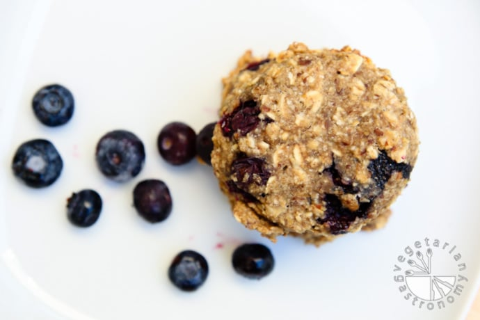 blueberry banana breakfast cookies-9