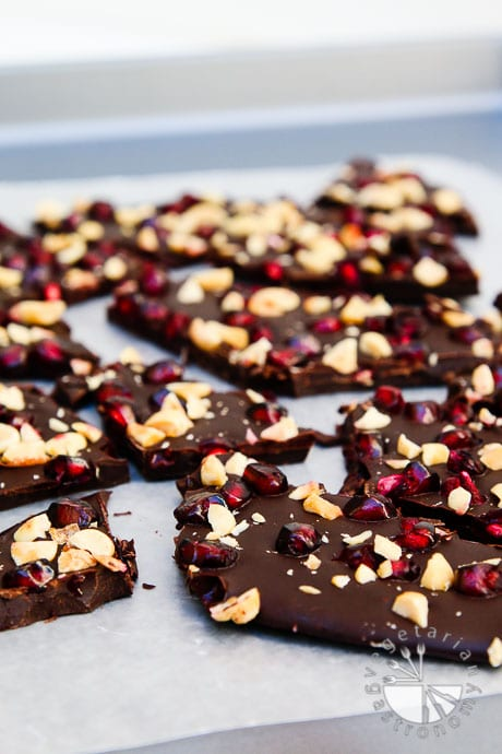 pomegranate peanut dark chocolate bark-4