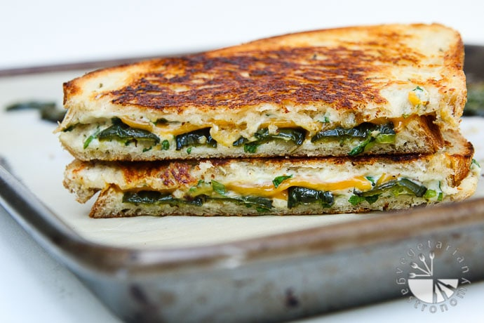 jalapeno popper herb grilled cheese-4