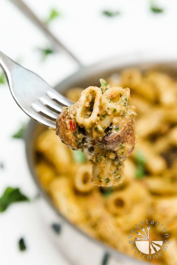 Creamy sun dried tomato miso and basil pesto pasta with for Dry roasted tomatoes