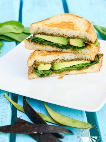 the ultimate green panini-5